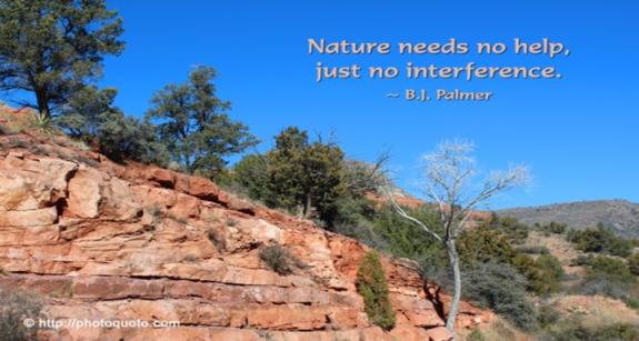 Nature Needs...