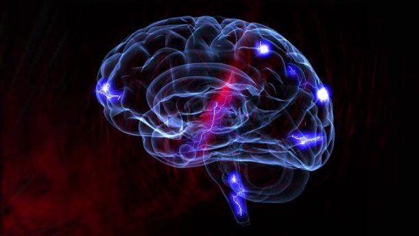 nerve-impluses-to-brain