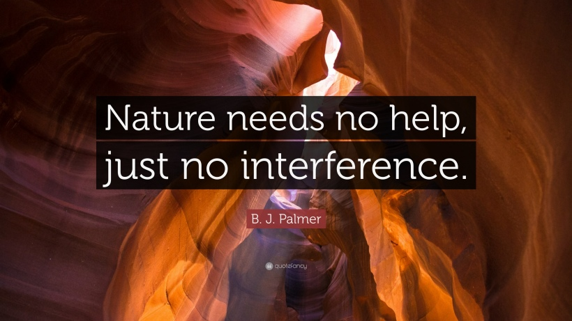 1192811-b-j-palmer-quote-nature-needs-no-help-just-no-interference