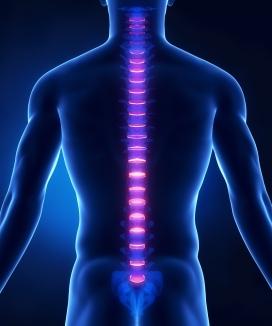 chiropractor-westlake-village-ca-chiropractic