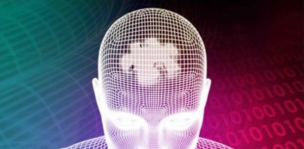 brain function-11